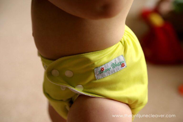 Awesome Blossom Cloth Diaper Review