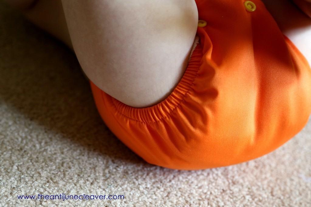 DinkleDooz Cloth Diaper Review