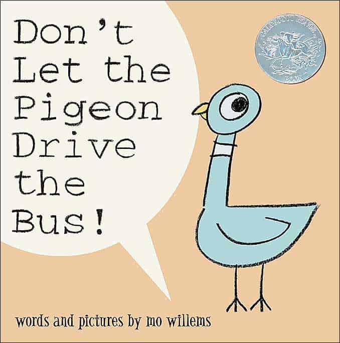 PigeonBus