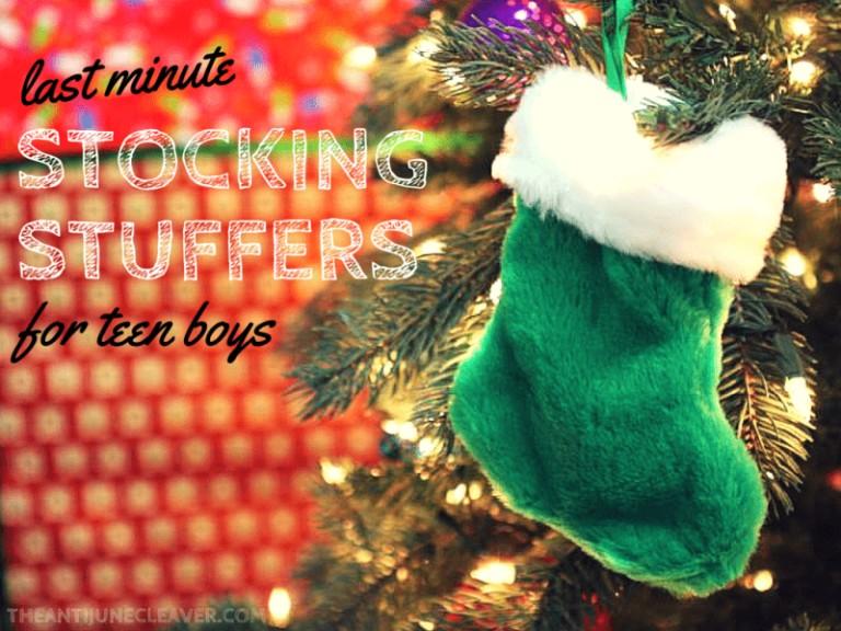 Last Minute Stocking Stuffers for Teen Boys