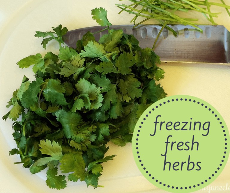 Don't Waste Your Fresh Herbs, Freeze Them