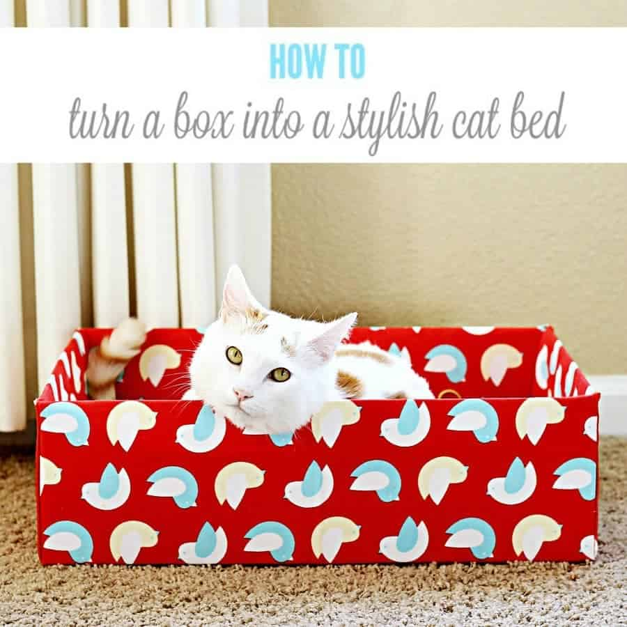 Turn an ordinary cardboard box into a stylish diy cat bed for How to make a cat bed easy