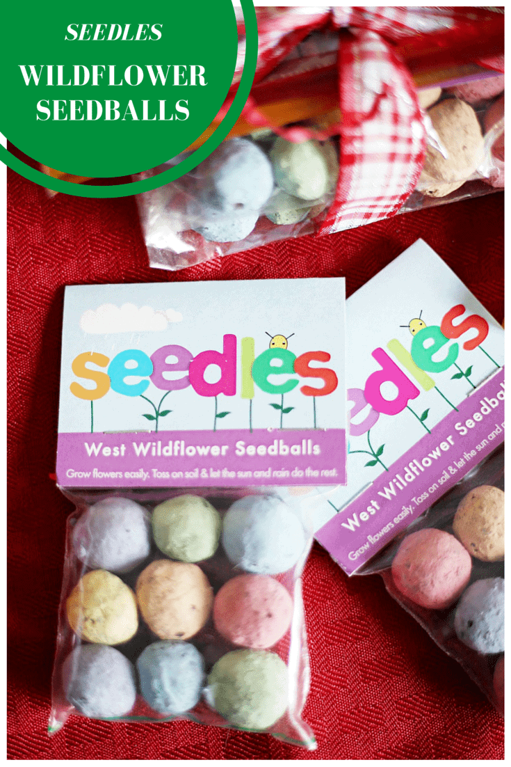 Holiday Gift Guide: Seedles Wildflower Seedballs