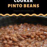 Pressure Cooker Instant Pot Pinto Beans with Salt Pork Recipe
