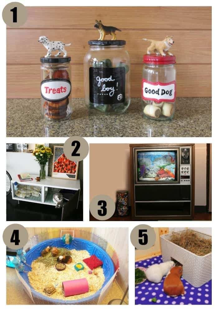 upcycling-ideas-for-the-pets-2
