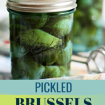 Pickled Brussel Sprouts Recipe