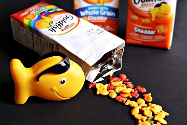 Make Math Practice Fun with Goldfish Crackers