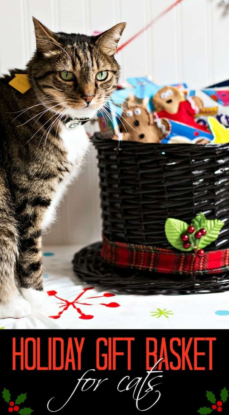 Christmas Gift for Cats: Gingerbread Man DIY Catnip Toys & a Holiday Gift Basket #Txt4Pet AD @Target