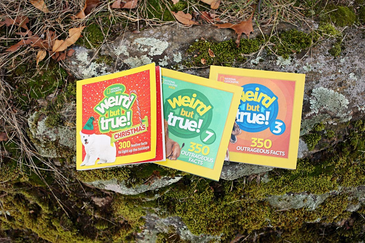 Weird But True is the perfect book series for your curious nonfiction fan. Children's nonfiction books offer a wealth of information and wonder for young minds and this set is perfect for newer readers and seasoned readers alike. With one fact per page, younger kids won't get overwhelmed with text, while older kids can easily devour all of these interesting pieces of trivia to share with friends and family. #childrensbooks #nonfiction #childrensnonfiction #weirdbuttrue #books #facts #factsforkids #nonfictionforkids #nationalgeographickids