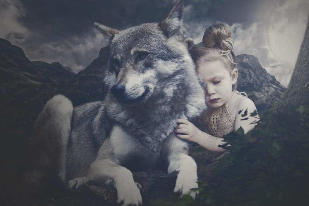 wolf with young girl
