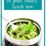 hot lunch for school lunch box