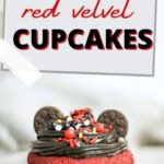 Mickey Mouse Cupcakes Pin