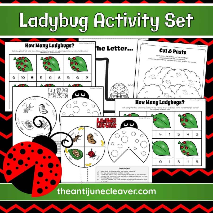 Ladybug printable worksheets for kids