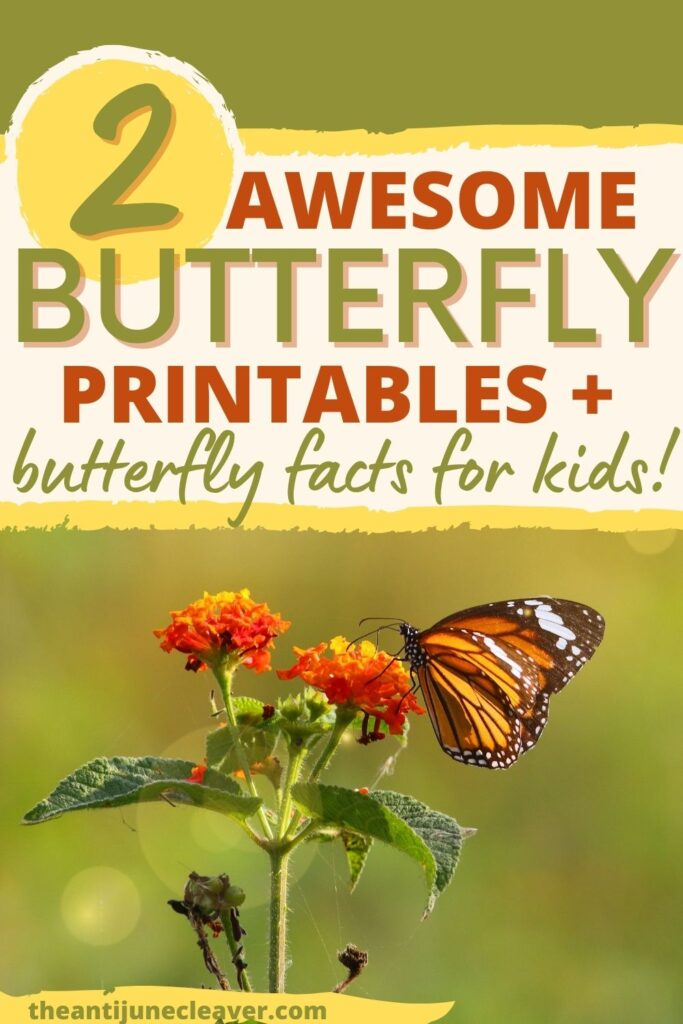 Butterfly facts for kids plus printable activity worksheets